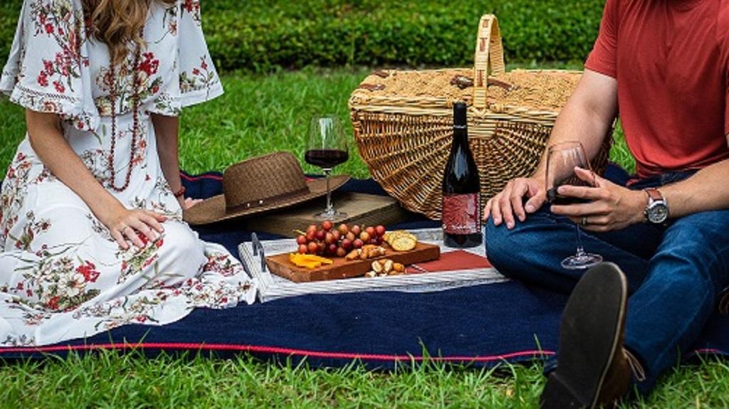 ピクニックの必需品のレジャーシート